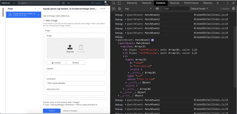 Screenshot of custom input component in use.