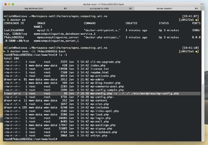 Terminal window showing the Docker server environment.