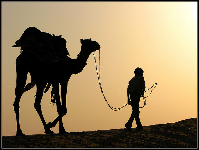 A traveler with his camel walking in the desert.